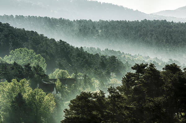 Residential Area Photograph - Houses And Sunbeams In Spruce Woodland by 1001slide