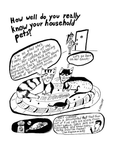 November 11th Drawing - How Well Do You Really Know Your Household Pets? by Stephanie Skalisk