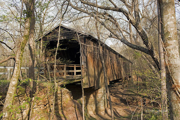 Photograph - Howard's Covered Bridge by Mike Fitzgerald