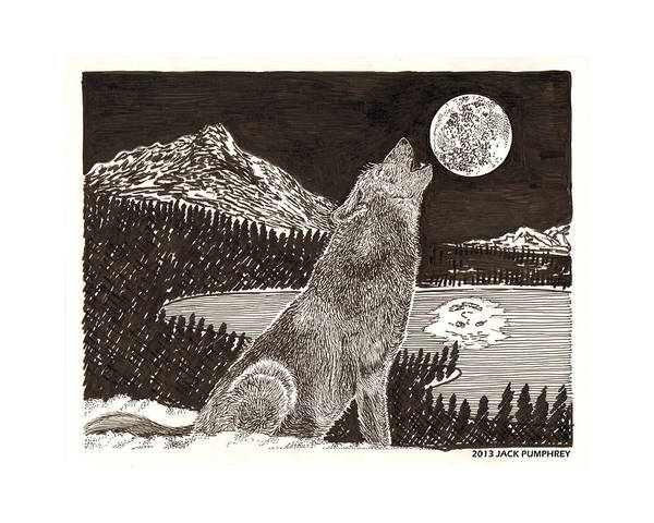 Nocturnal Drawing - Coyote Full Moon Howling by Jack Pumphrey