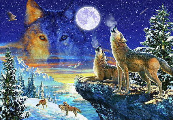 Wall Art - Drawing - Howling Wolves by MGL Meiklejohn Graphics Licensing