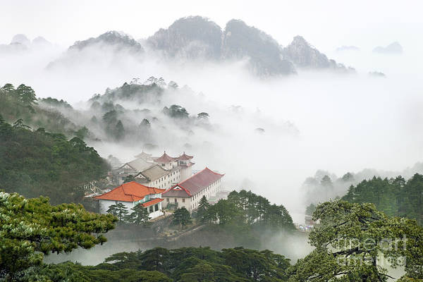 Trees In Fog Photograph - Huangshan National Park by King Wu