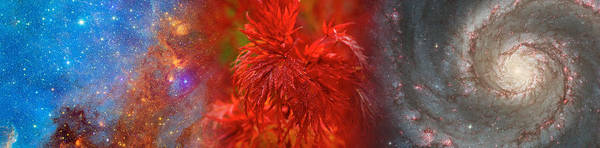 Concern Photograph - Hubble Galaxy With Red Maple Foliage by Panoramic Images