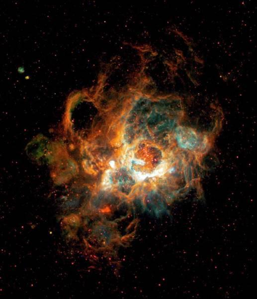 Wall Art - Photograph - Hubble Space Telescope View Of Nebula Ngc 604 by Nasaesastscih.yang, U.illinois