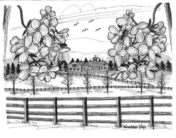 Drawing - Hudson Valley Apple Blossoms by Richard Wambach