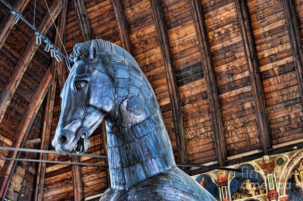 Photograph - Huge Wooden Trojan Hourse by Brenda Kean