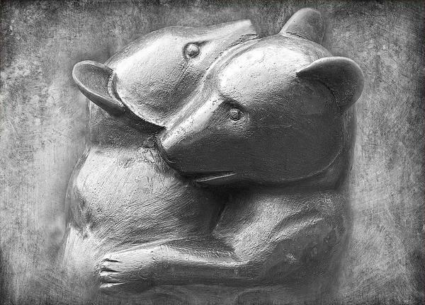 Photograph - Huggy Bears by David Davies