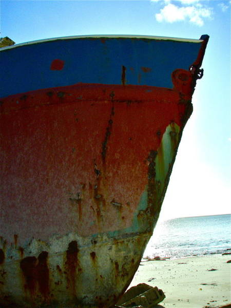 Photograph - Hull Study by Kim Pippinger