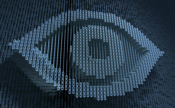 Malware Photograph - Human Eye In Three Dimensional Binary by Ikon Images