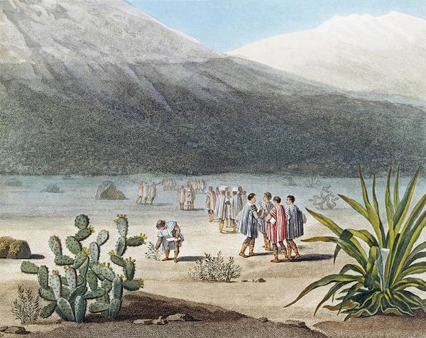 Catalog Photograph - Humboldt In The Andes by Natural History Museum, London/science Photo Library
