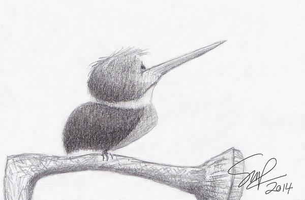 Hummingbird Bulldog Art Print