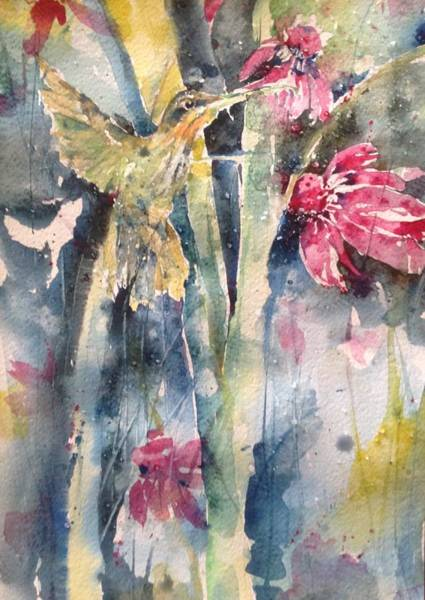 Hummingbird Don't Fly Away ...fly Away Art Print
