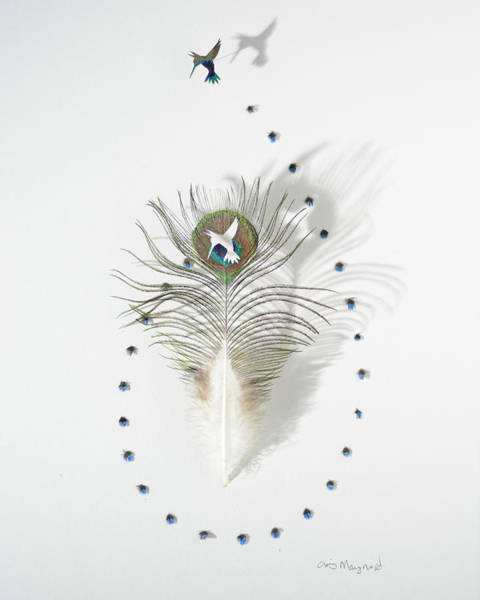 Wall Art - Mixed Media - Hummingbird Peacock by Chris Maynard
