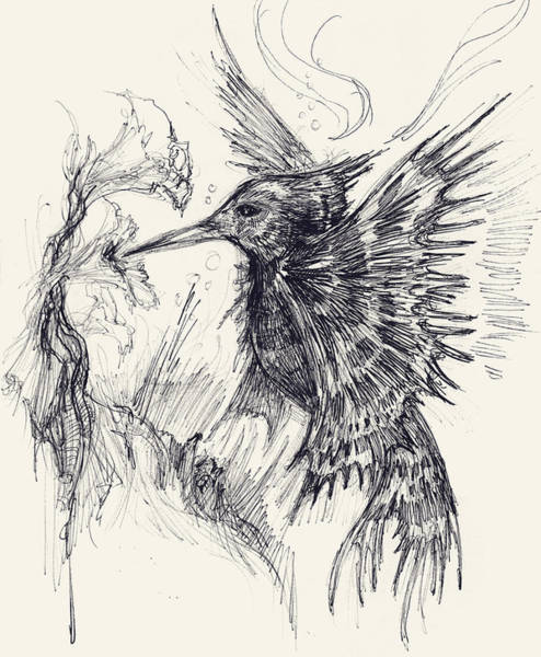 Holy Ghost Drawing - Hummingfish by Michael Mynatt