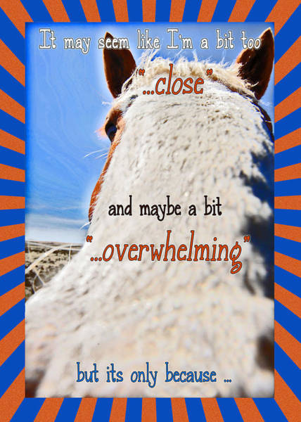 Mixed Media - Humorous Funny Greeting Card by Amanda Smith