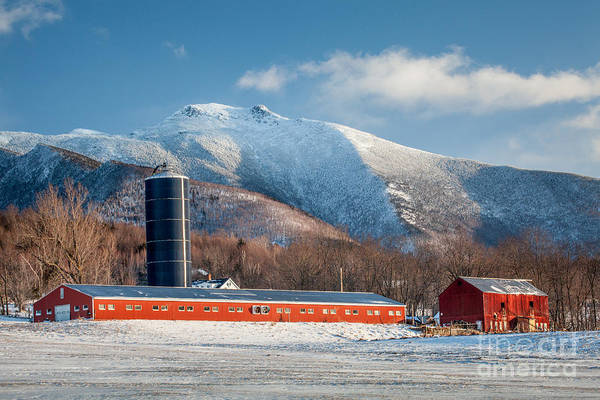 Photograph - Hunger Mountain by Susan Cole Kelly