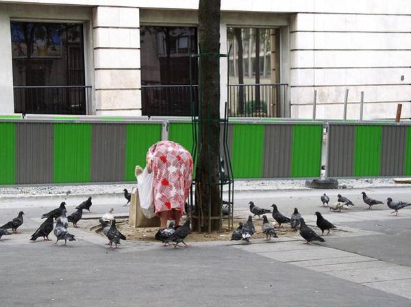 Photograph - Hunger No More - Paris 2005 by Cleaster Cotton
