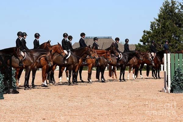 Photograph - Hunter Line Up by Janice Byer