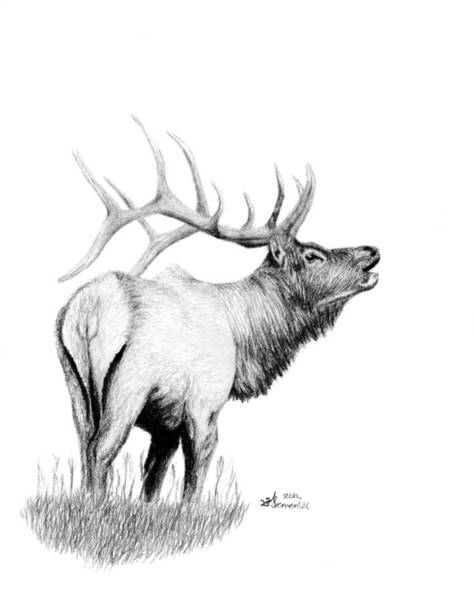 Antlers Drawing - Hunters Target by Kayleigh Semeniuk