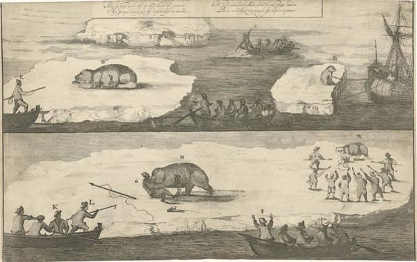 Polar Bear Drawing - Hunting A Polar Bear, Polar Bear Attacks A Man by Jan Luyken