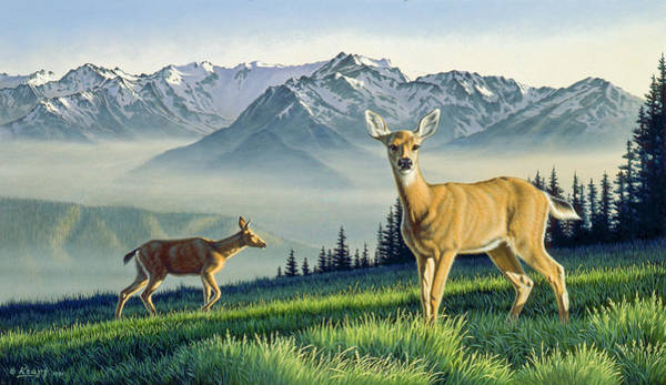 Olympic Painting - Hurricane Ridge-blacktails by Paul Krapf