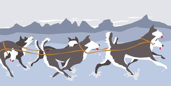 University Of Washington Wall Art - Digital Art - Huskies by Dry Climate Studios