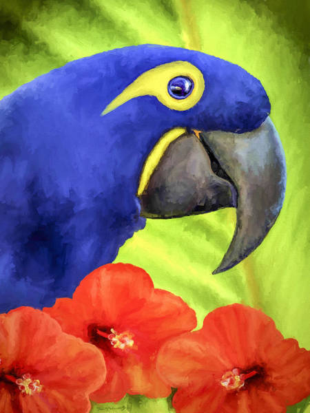 Wall Art - Painting - Hyacinth Macaw by David Wagner