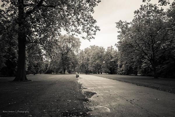 Photograph - Hyde Park - For Eugene Atget by Ross Henton