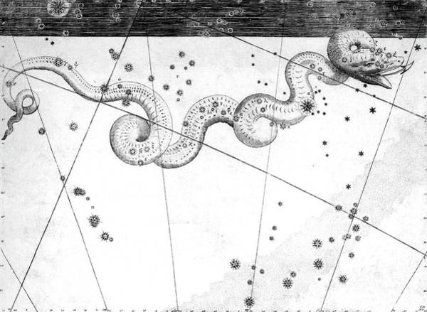 Hydra Wall Art - Photograph - Hydra Constellation by Royal Astronomical Society/science Photo Library