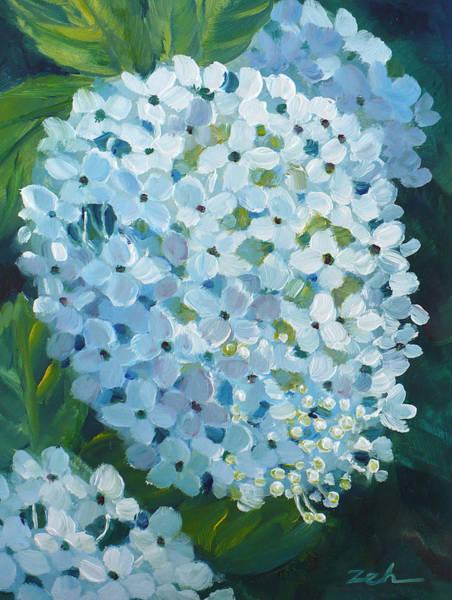 Hydrangea Blossom Art Print