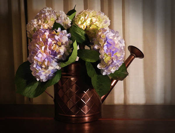 Photograph - Hydrangeas In Water Can by Grace Dillon