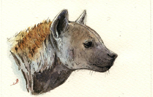 African Wildlife Painting - Hyena Head Study by Juan  Bosco