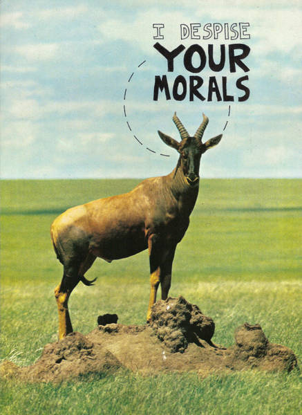 Capitalism Mixed Media - I Despise Your Morals by Neil Campau