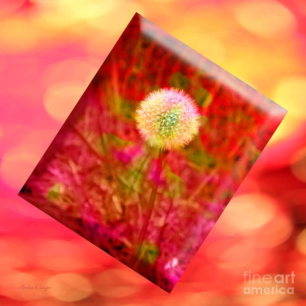 Photograph - I Feel Pretty 2 by Andee Design