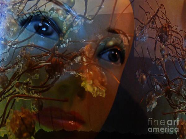 Photograph - I Feel The Autumn by Eva-Maria Di Bella