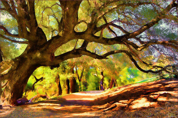 Painting - I Gave My Word To This Tree by Douglas MooreZart