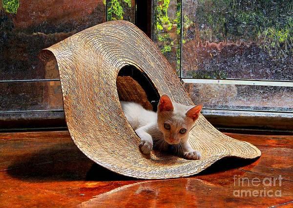 I Just Love My New Hat Art Print