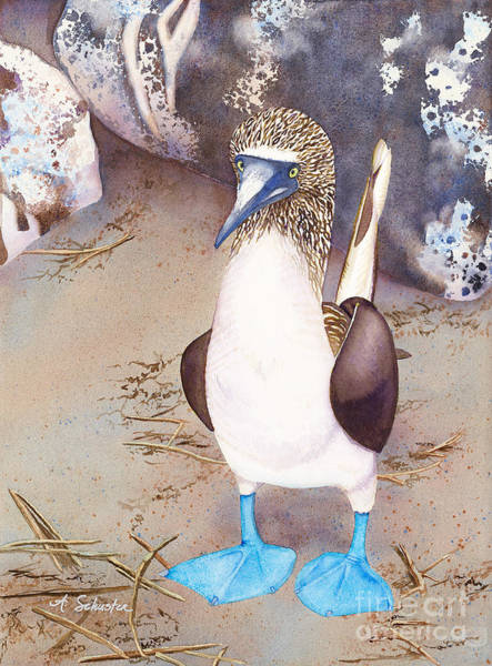Blue Footed Booby Wall Art - Painting - I Love Boobies by Amanda Schuster
