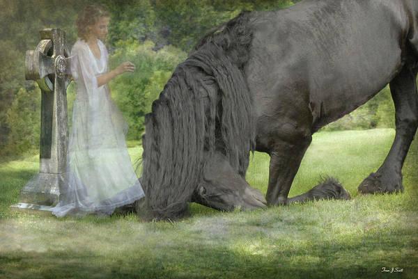 Friesian Horse Photograph - I Miss You by Fran J Scott