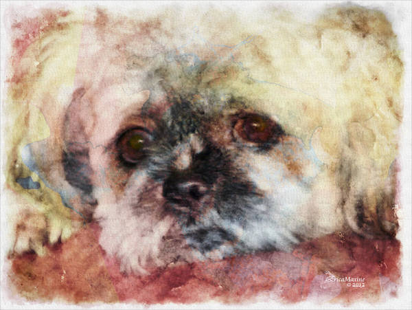 Painting - I Need A Friend - Featured In Cards For All Occasions  by Ericamaxine Price