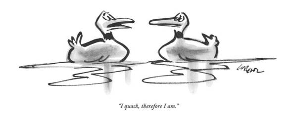 January 8th Drawing - I Quack, Therefore I Am by Lee Lorenz
