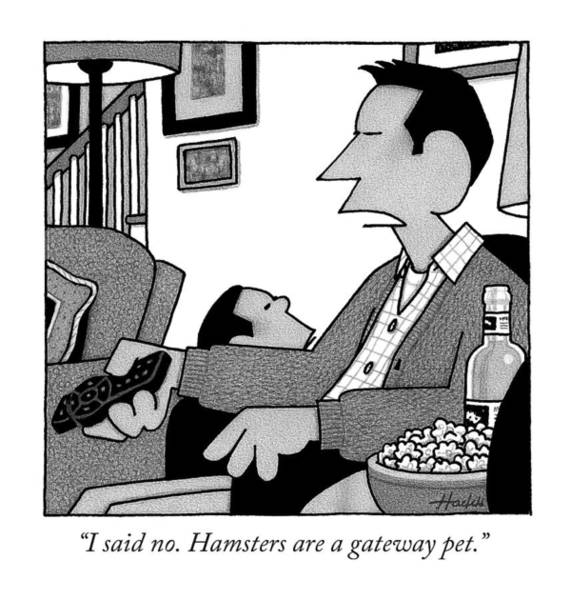 Hamster Drawing - I Said No. Hamsters Are A Gateway Pet by William Haefeli