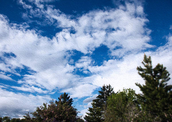 Photograph - I See A White Cloud Looking At Me by Omaste Witkowski