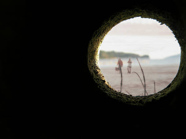 Photograph - I Spy by Micki Findlay