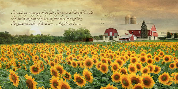 Wall Art - Photograph - I Thank Thee by Lori Deiter
