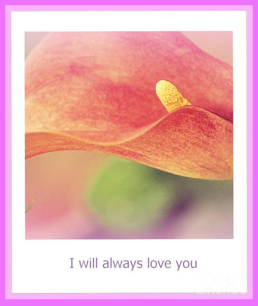 Photograph - I Will Always Love You by Susanne Van Hulst