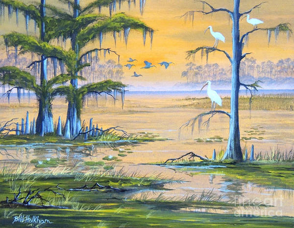 Roost Painting - Ibis - Everglades Misty Sunrise by Bill Holkham