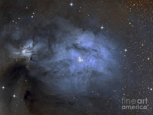 Photograph - Ic 4603 Is A Blue Reflection Nebula by Roberto Colombari