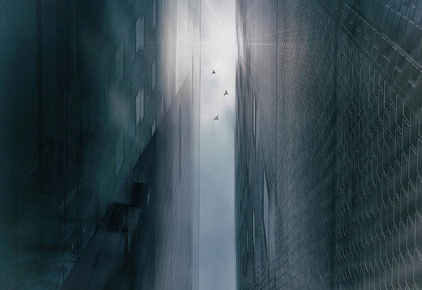 Wall Art - Photograph - Icarus by Keisuke Ikeda @