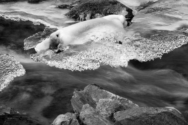 Photograph - Ice And Flow by Fran Riley